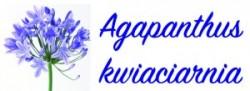 Kwiaciarnia Agapanthus.pl